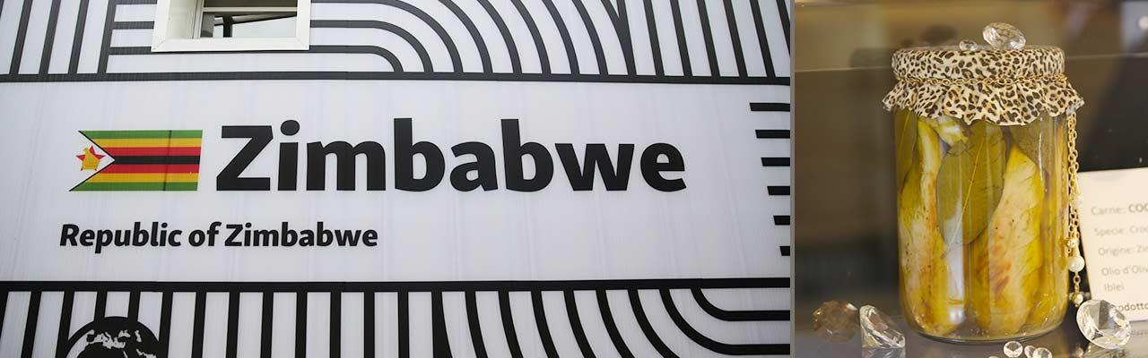 5_-ZIMBABWE