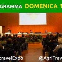 Meeting – Turismo Attivo: sviluppare una destinazione vincente a 360 gradi