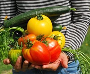 cibo_agricultura